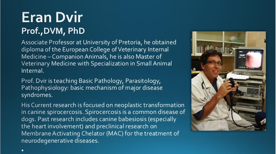 Prof. Dvir