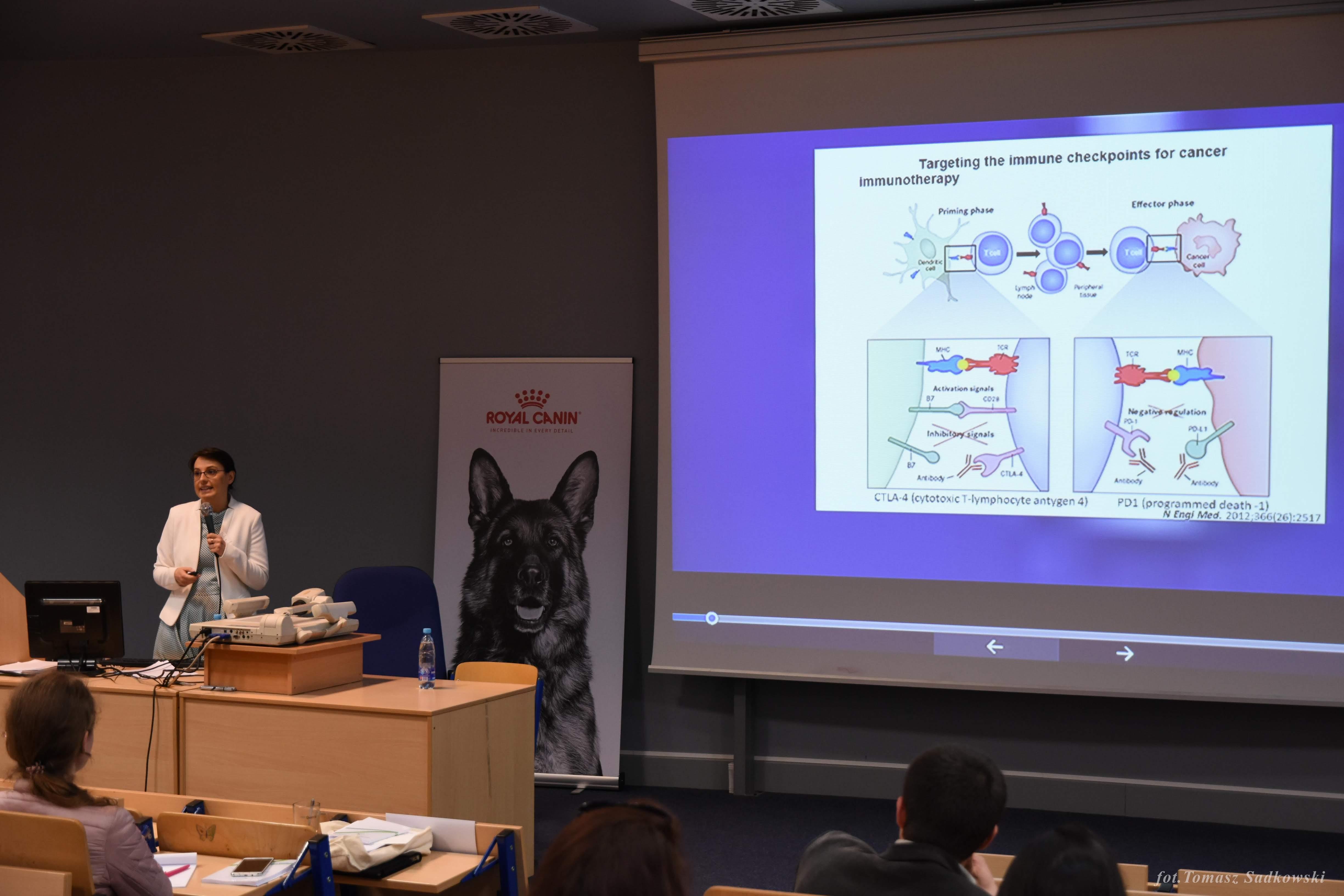 dr Majchrzak's lecture